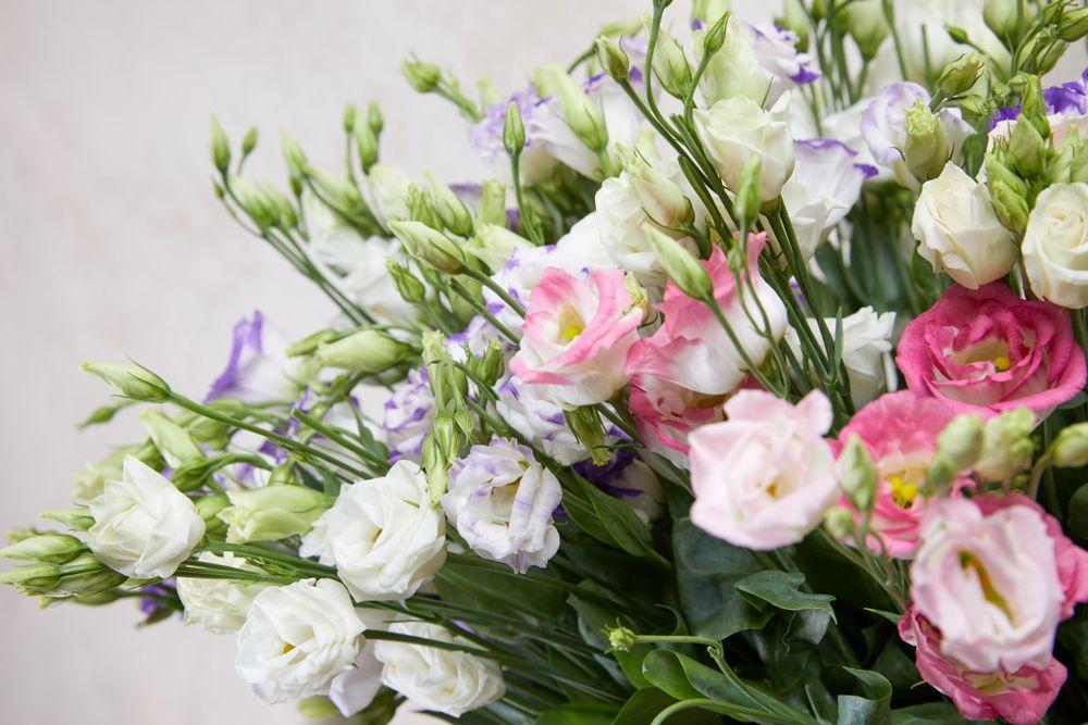 Kupowanie Kwiatow Na Imieniny Jakie Beda Odpowiednie Zaradnik