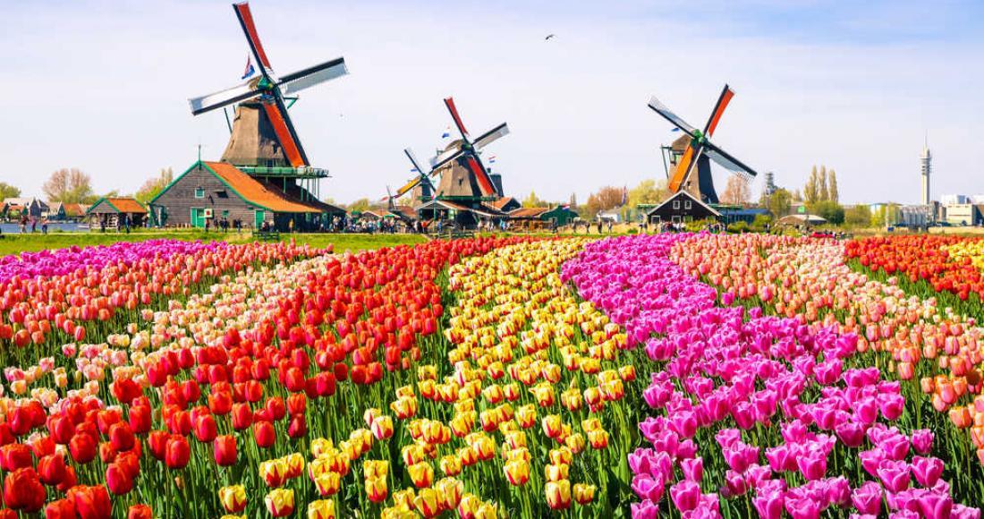 Holandia – co warto zwiedzić i jak zaoszczędzić na wyjeździe