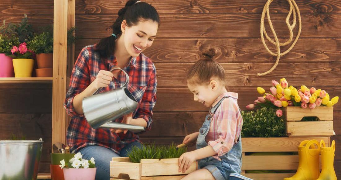Jak tanio urządzić ładny ogród?