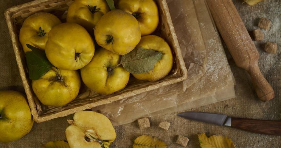 Pigwa – właściwości odżywcze i zdrowotne